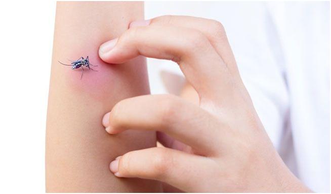 Аллергия на комариные укусы у ребенка фото