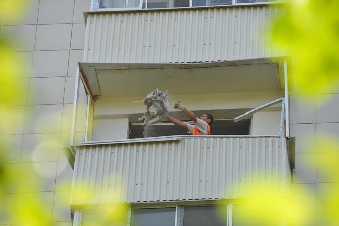 Блохи с балкона фото