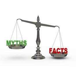 Мифы и факты о постельных клопах