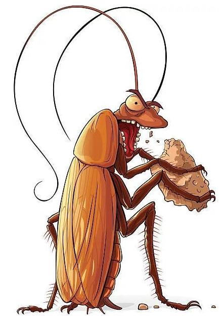 кусаются ли тараканы бытовые домашние