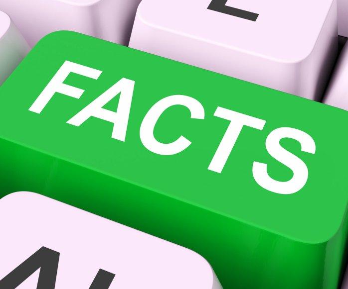 Постельные клопы – только факты