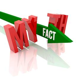 Топ-10 мифов о постельных клопах