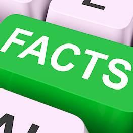 27 фактов о постельных клопах