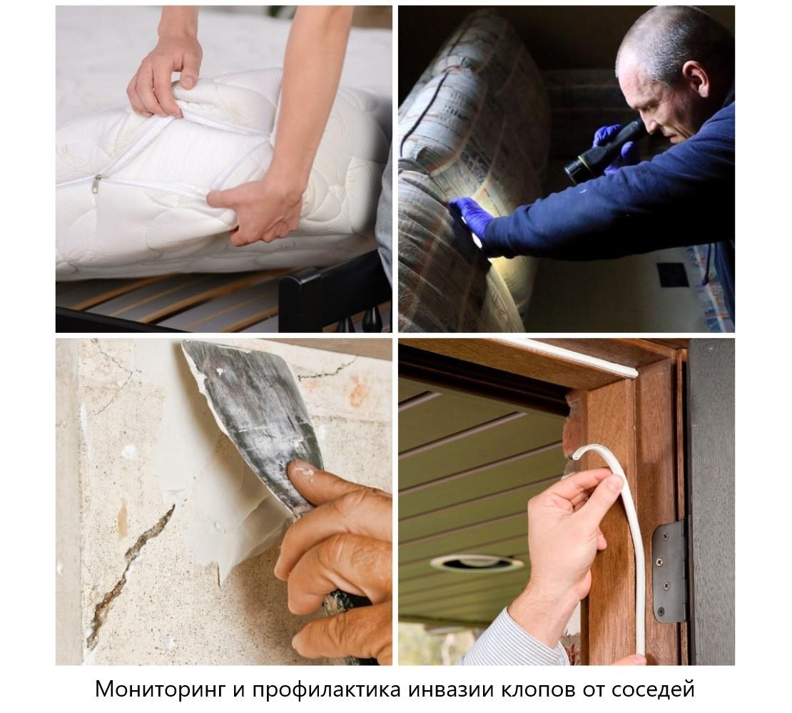 Как защититься свою квартиру, если у соседей клопы